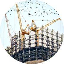 Zapobieganie pokrywania się terminów prac budowlanych wraz z czasem zasiedlania przez ptaki
