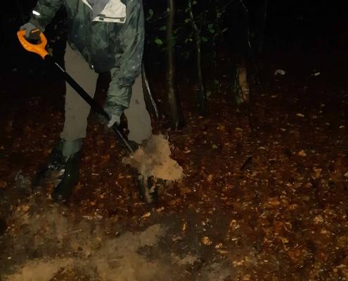 zdjęcie człowiek kopie dół w lesie przeniesienie mrowiska kompensacja przyrodnicza