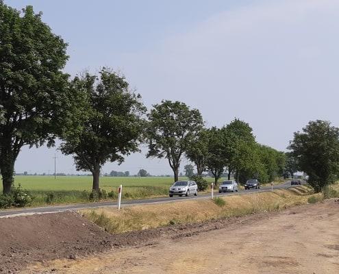 zdjęcie drogi w rozbudowie ekspertyza ornitologiczna