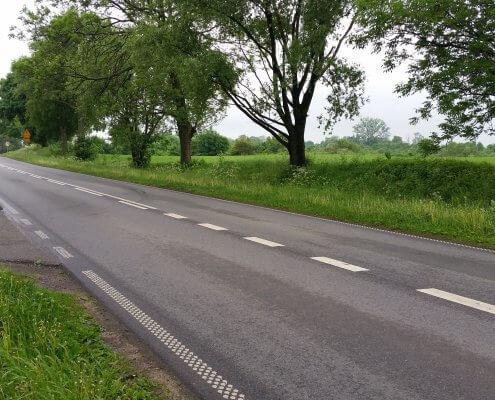 zdjęcie drogi z aleją drzew ocena karta informacyjna przedsięwzięcia