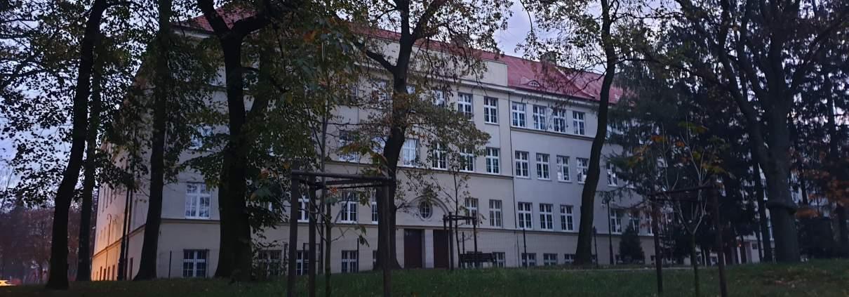 zdjęcie fragment parku oraz budynek szkoły ekspertyza ornitologiczna