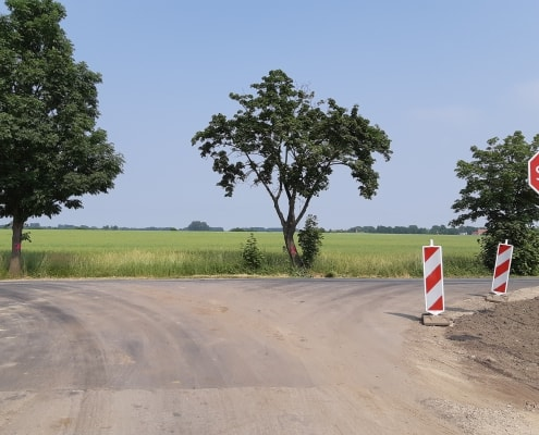 zdjęcie skrzyżowania dróg ekspertyza ornitologiczna