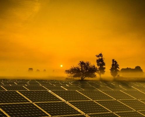 zdjęcie farmy fotowoltaicznej o wschodzie słońca