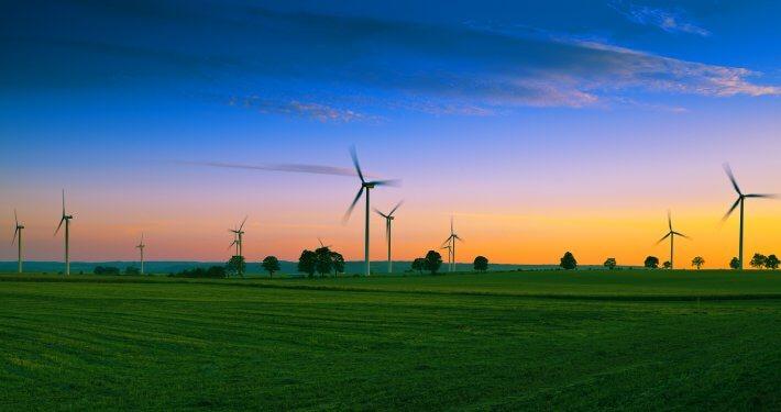 zdjęcie farmy wiatrowej monitoring ornitologiczny