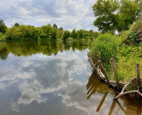 rzeka pilica i okolica przed inwentaryzacją przyrodniczą