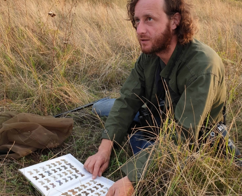 entomolog siedzi na łące