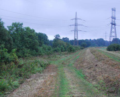 zdjęcie linii elektroenergetycznej pośród łąk i zadrzewień inwentaryzacja przyrodnicza