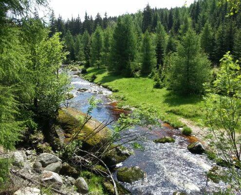 zdjęcie rzeki w górach monitoring przyrodniczy