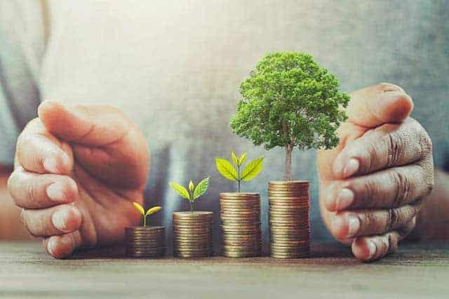 Koszt oceny śladu ekologicznego