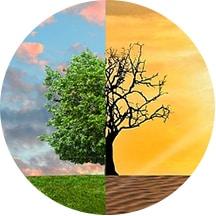 Ocena śladu ekologicznego - zmiana klimatu