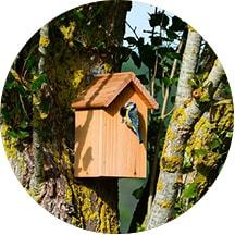 Ocena śladu ekologicznego - budka dla ptaków