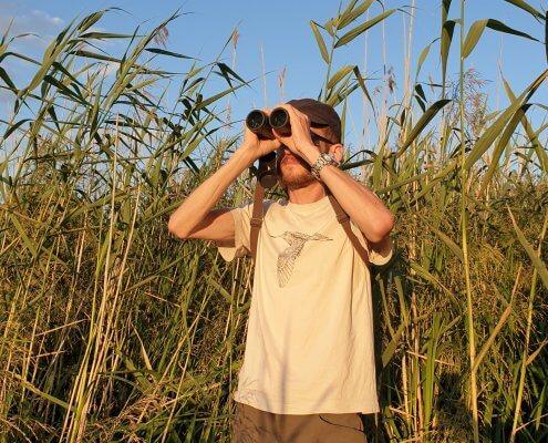 inwentaryzacja przyrodnicza ornitolog w trzcinach