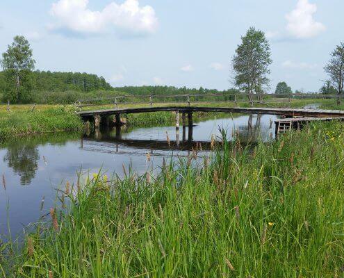 zdjęcie mostek na rzece inwentaryzacja przyrodnicza