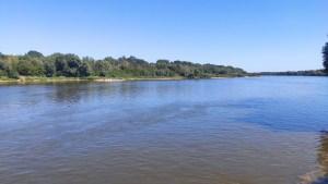 zdjęcie Wisły koryto rzeki z zadrzewionym przeciwległym brzegiem na drugim planie inwentaryzacja przyrodnicza