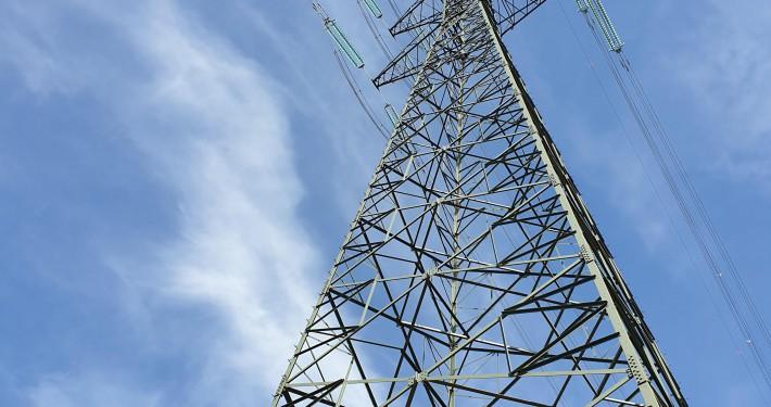 zdjęcie słupa elektroenergetycznego monitoring przyrodniczy